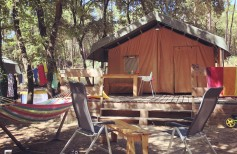 safari_tente_green_camp_provence_simioune_ventoux_